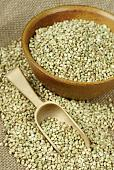 ��������� ������� ������ � �����-������!-greenbuckwheat.jpg