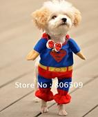 ����� �� �������� �����?-450pcs-lot-i-pet-costumes-dog-clothes-mix-superman-spiderman-batman-w-cloak-size-xs-s.jpg