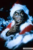 ����������(���) - �����, �������, �������.-kinopoisk.ru-how-grinch-stole-christmas-1508306.jpg